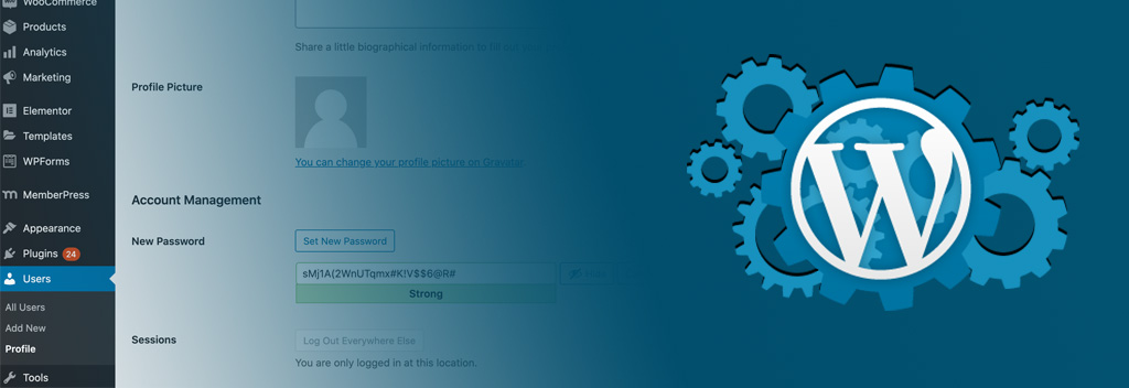 How To Create Admin Credential For WordPress
